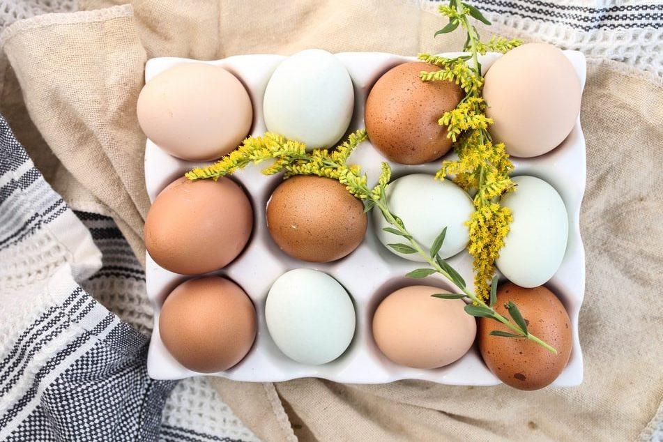 Huevos: ¿Sí o no? ¿Cuántos a la semana? ¿Cómo comerlos?